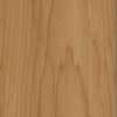 Timber Pale Oak